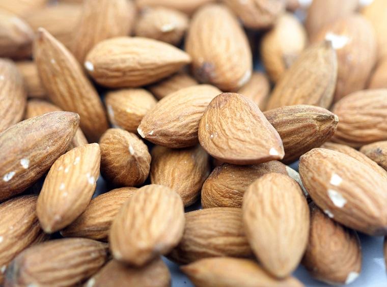 たんぱく質を補給する為にお勧めの高タンパク質のナッツ(種)