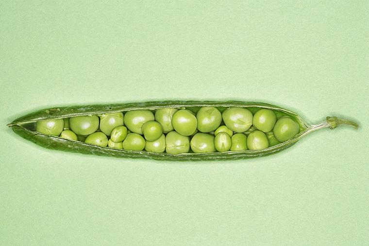 ピープロテインのたんぱく質や栄養素はどのくらい?